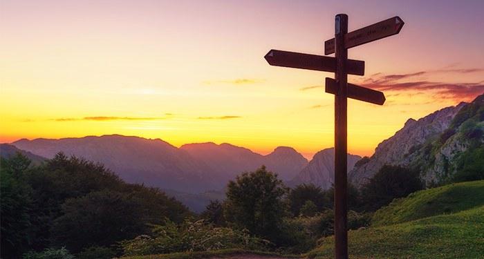 Een wegwijzer in een berglandschap - Reditus Advies